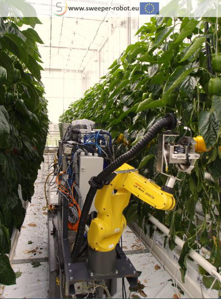 Robot in greenhouse PSKW
